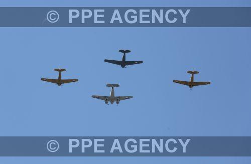 PPE19062958.jpg