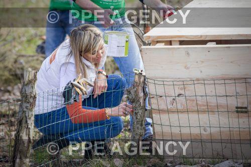 PPE170310148.jpg
