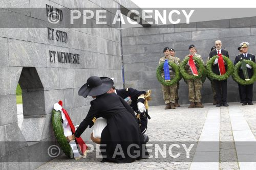 PPE17090536.jpg