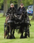 12-05-2017 Duke Prince Philip, Duke of Edinburg, seen riding a carriage at day three of the Royal Windsor Horse show. 
