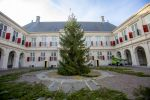 25-11-2020 New Christmastree at palace Noordeinde in The Hague.